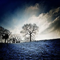 Buy canvas prints of Dramatic frost by Rachael Jackson