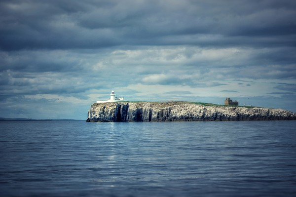 Farne islands out at sea Canvas Print by Rachael Jackson