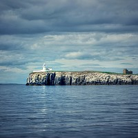 Buy canvas prints of Farne islands out at sea by Rachael Jackson