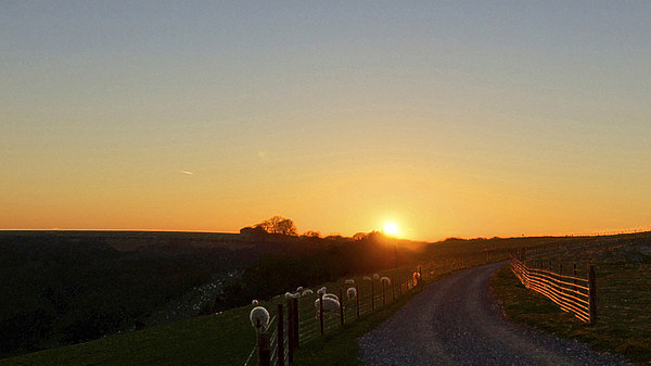 Sunset At Coombe Gibbit Framed Mounted Print by Andrew Middleton