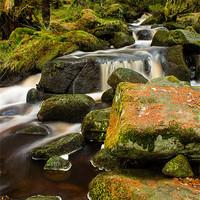 Buy canvas prints of Wyming Brook by John Dunbar