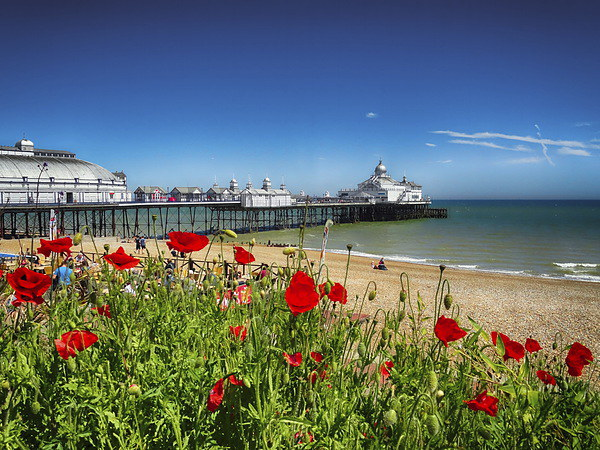 Eastbourne Pier and poppies Canvas print by Phil Clements