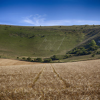 Buy canvas prints of The Long Man Of Wilmington by Phil Clements