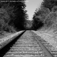 Buy canvas prints of Black and White Railroad by Michael Waters Photography