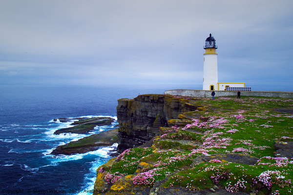 Noup Head Lighthouse Canvas Print by Steven Watson