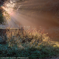 Buy canvas prints of SHAFTS OF LIGHT by Helen Cullens