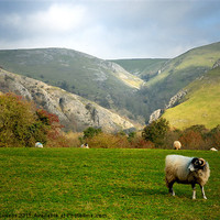 Buy canvas prints of DOVEDALE by Helen Cullens
