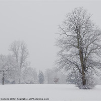 Buy canvas prints of MIST & SNOW AT VERULAMIUM by Helen Cullens