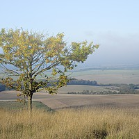 Buy canvas prints of Mist over the Vale of Aylesbury                    by Helen Cullens