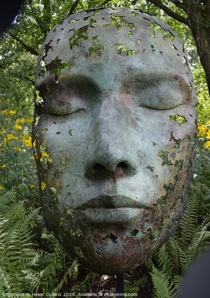 Leaf Spirit by Simon Gudgeon Canvas Print by Helen Cullens