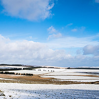 Buy canvas prints of Princetown by David Martin