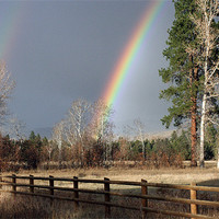 Buy canvas prints of Rainbow in Montana by Larry Stolle