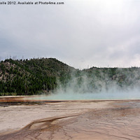 Buy canvas prints of Yellowstone Park by Larry Stolle