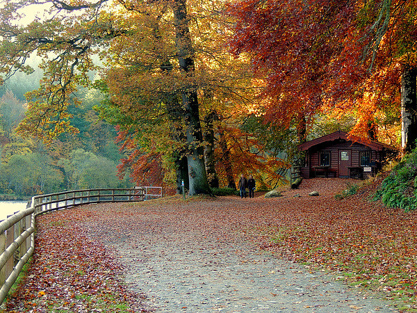 Dunkeld Autumn Canvas print by Laura McGlinn Photography