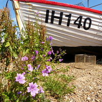 Buy canvas prints of Aldeburgh, Suffolk, White Boat by Chris Petty