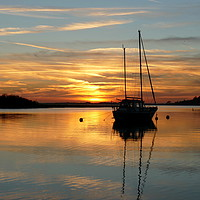 Buy canvas prints of Alresford Creek, Essex  by Chris Petty