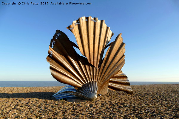 The Scallop Canvas print by Chris Petty