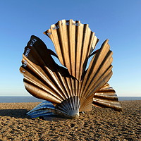 Buy canvas prints of The Scallop by Chris Petty