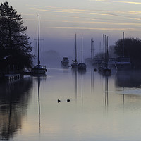 Buy canvas prints of Wareham on a Misty Morning by Paul Brewer