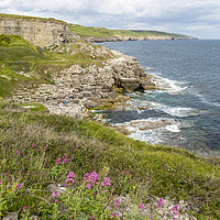 Buy canvas prints of Winspit Quary  by Paul Brewer