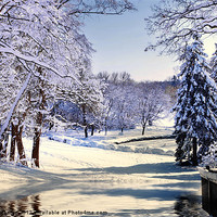 Buy canvas prints of Winter Snow by Elaine Manley