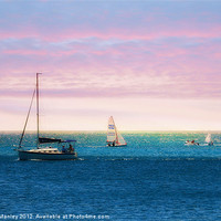 Buy canvas prints of Sailing by Elaine Manley
