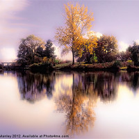 Buy canvas prints of Autumn Pond by Elaine Manley