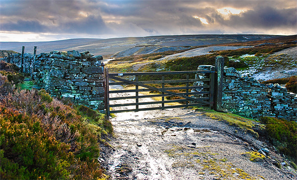 Yorkshire Dales Gate Upper Swaledale Canvas print by Greg Marshall