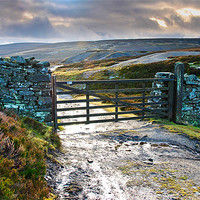 Buy canvas prints of Yorkshire Dales Gate Upper Swaledale by Greg Marshall