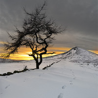 Buy canvas prints of  Roseberry Topping, Winter Sunset, Teesside by Greg Marshall