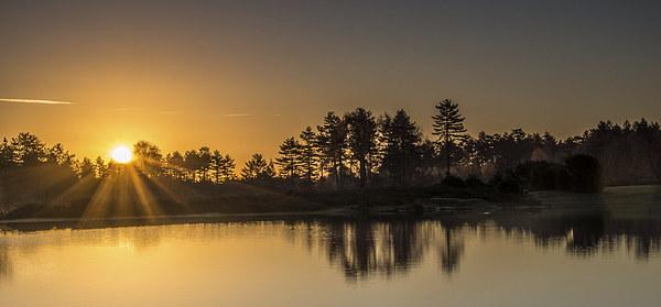 Sunrise at Mogshade Canvas print by Phil Wareham