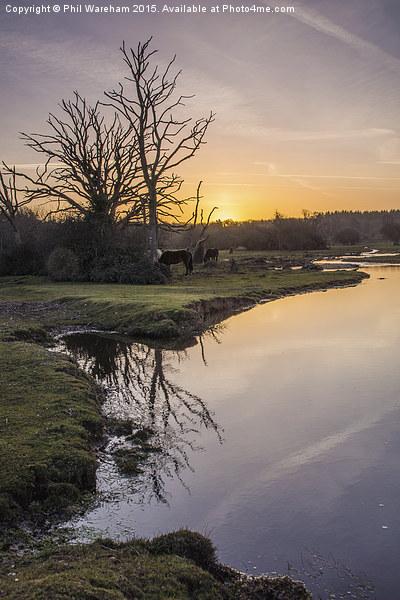 Mill Lawn Brook at Sunrise  Canvas print by Phil Wareham