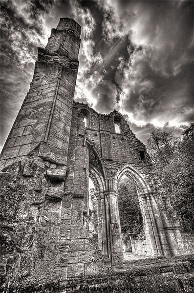 ROCHE ABBEY Canvas print by Julie  Chambers