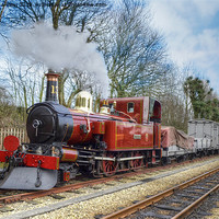Buy canvas prints of Steam Train by Julie  Chambers