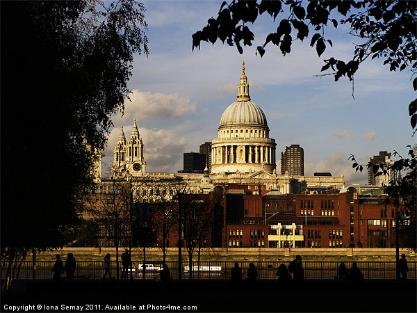 St Paul's Cathedral Canvas Print by Iona Semay