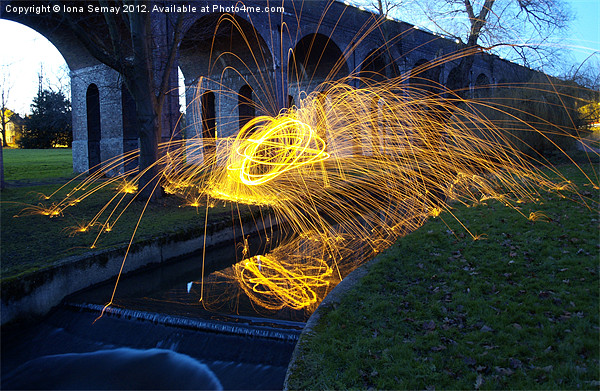 Sparks in the park Canvas Print by Iona Semay
