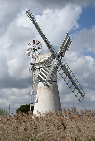 Thurne Drainage Mill, Norfolk. Canvas Print by Damien VC