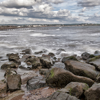 Buy canvas prints of Windy on the Warren by Andy dean