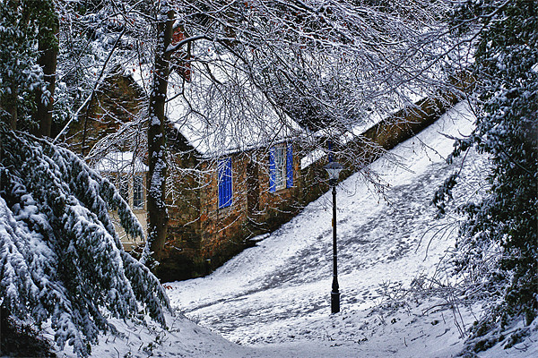 Snowy Lane Canvas print by kevin wise