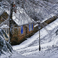 Buy canvas prints of Snowy Lane by kevin wise