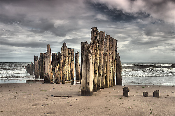 Wooden Posts Canvas print by kevin wise