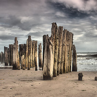 Buy canvas prints of Wooden Posts by kevin wise