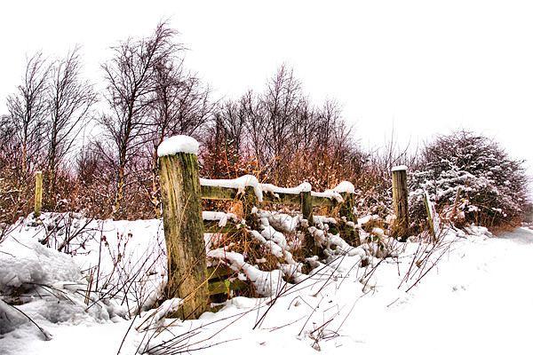 Old gate Canvas print by kevin wise