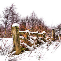 Buy canvas prints of Old gate by kevin wise