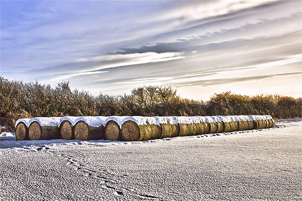 Bales Canvas print by kevin wise