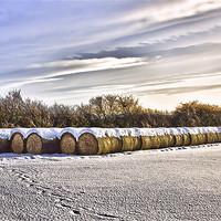 Buy canvas prints of Bales by kevin wise
