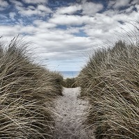 Buy canvas prints of Sandy Pathway by kevin wise