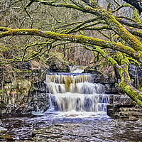 Buy canvas prints of Summerhill Force by kevin wise