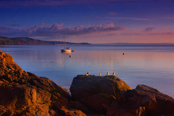 Babbacombe Veiw                                    Canvas print by kevin wise