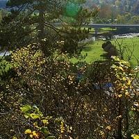 Buy canvas prints of  Autumn Landscape by philip milner